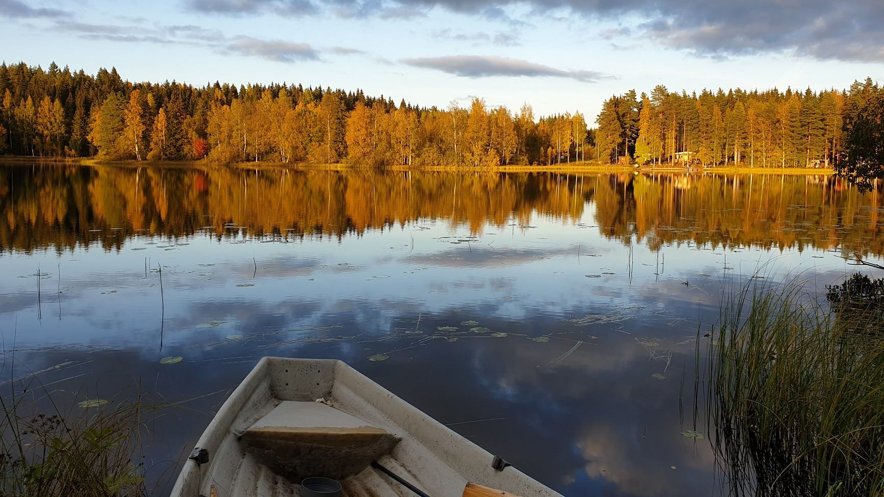 white boat on lake near green trees under white clouds