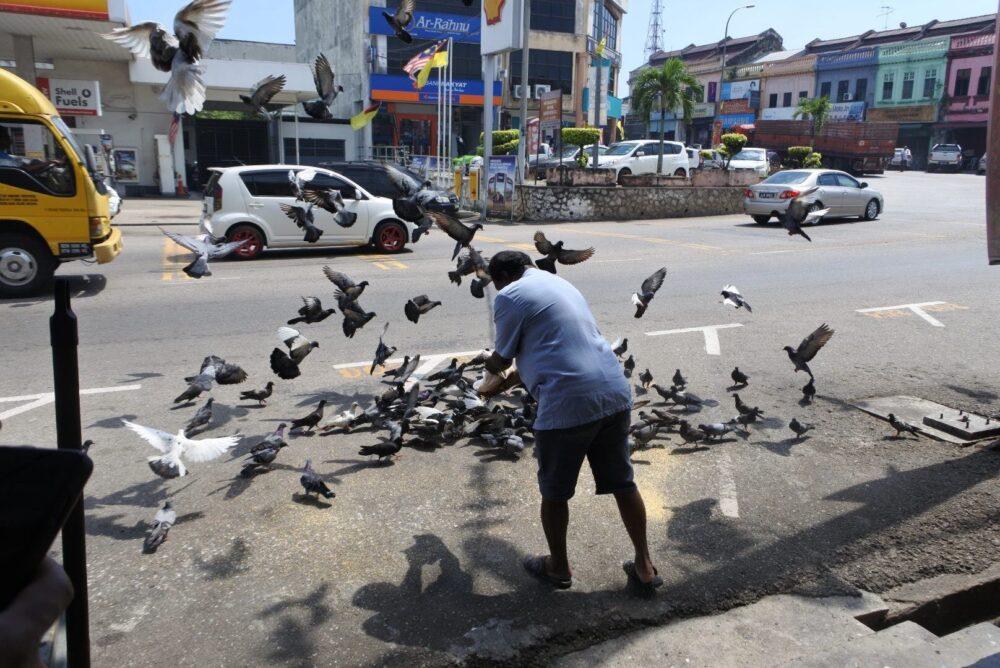 マレーシアの写真